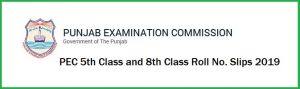 PEC-Punjab Examination Commission  5th & 8th Class Roll Number slips 2019