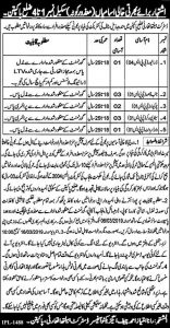 District Health Authority Pakpatan Jobs 2019 for Disable Person