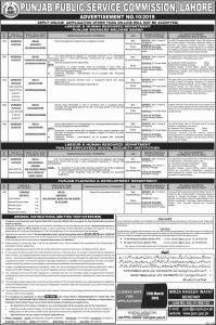 PPSC (Punjab Public Service commission Jobs 2019 Advertisement No. 10 for Labour & Human Resources Department, Punjab Planning & Development Department