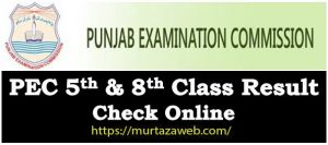 Result Class 5th & 8th March 2019 PEC Punjab Examination Commission Latest