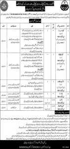 Danish School Boys and Girls Mianwali Jobs 2019 for Teaching and None Teaching for Disable Person