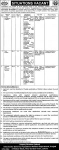 Population Welfare Department Govt of Punjab Jobs 2019 for Project coordinator officer, Data Analyst, Computer Operator