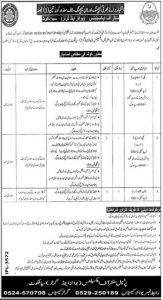 Teaching and None Teaching Jobs 2019 Sialkot for Disable Person
