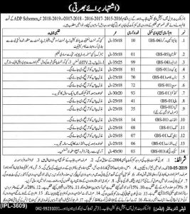 Special Education Department Punjab jobs 2019 For 500 Workers, Salesman, Drivers and much more