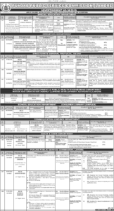 Jobs You Can Get With a Teaching Degree 2019 PPSC Jobs