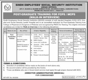 Sindh Employees Social Security Institution Jobs 2020, Walk in Interview