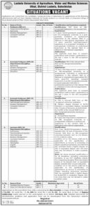 Assistant Professor, Professor Jobs 2020 at Lesbela University of Agriculture Baluchistan