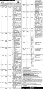 Population Welfare Department Punjab NTS Jobs 2020, Social Media Officer and Much More