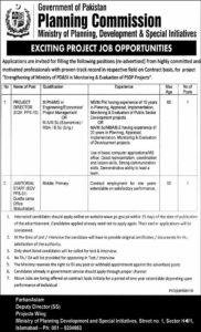 Ministry of Planning, Development & Special Initiatives Jobs 2020, Project Director