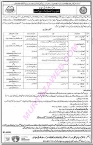 Directorate Of Agriculture And Engineering Baluchistan Latest Labour Jobs 2020