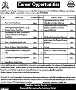 Punjab Information Technology Board Pitb Latest Project Director Jobs 2020