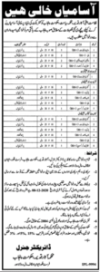 Culture Tourism And Antiquities Department Lahore Administrative New Jobs 2020