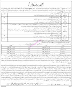 District Upper Kohistan Jobs 2020 Elementary and Secondary Education Department NTS