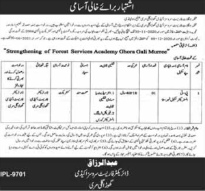 Forest Department Instructor Jobs 2020, Murtazaweb.com