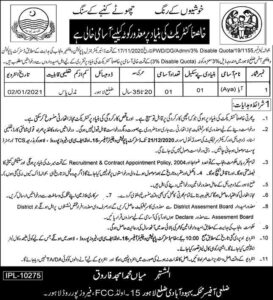 Disabled Persons Jobs In Express Newspaper 2020 in Population Welfare Department Lahore