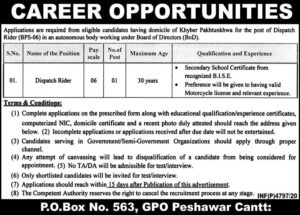Government Sector Organization Khyber Pakhtunkhwa Peshawar Jobs 2021