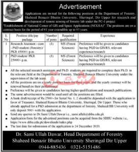 Shaheed Benazir Bhutto University Mashriq Newspaper Jobs 2020 in Upper Dir KPK
