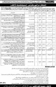 Health Department Hafizabad Jobs 2021 for Doctors Specialist MBBS Base