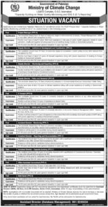 Ministry of Climate Change Jobs 2021 for Duty Director, IT Analyst Recruitment