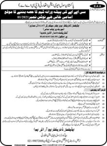 PCAA Jobs 2021 Karachi, Pakistan Civil Aviation Authority for Additional Director
