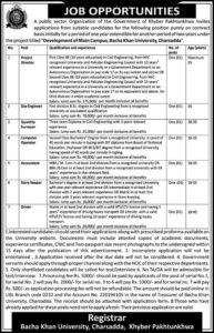 Bacha Khan University Charsadda Jobs 2021 for Accountant