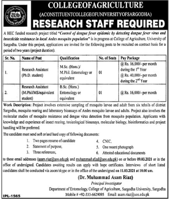 College of Agriculture Jobs 2021 For Research Assistant in Sargodha