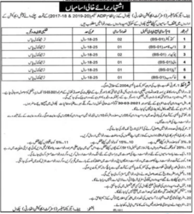 District Education Authority Jobs 2021 in Chakwal for IV Class