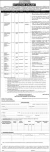 Management Jobs 2021 at Human Rights Coordination & Monitoring Unit