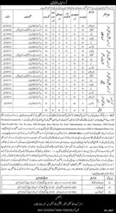 Class 4 Jobs 2021 at District Education Authority Layyah