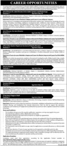 Public Sector Jobs 2021 in Islamabad for Deputy Director