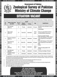 Stenotypist Jobs 2021 at Zoological Survey of Pakistan