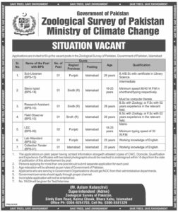 Zoological Survey of Pakistan Jobs 2021 in Islamabad Steno and more