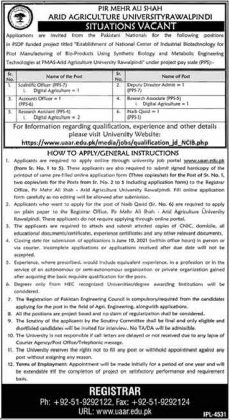 Accounts Officer Jobs in Pir Mehr Ali Shah Arid Agriculture University Rawalpindi