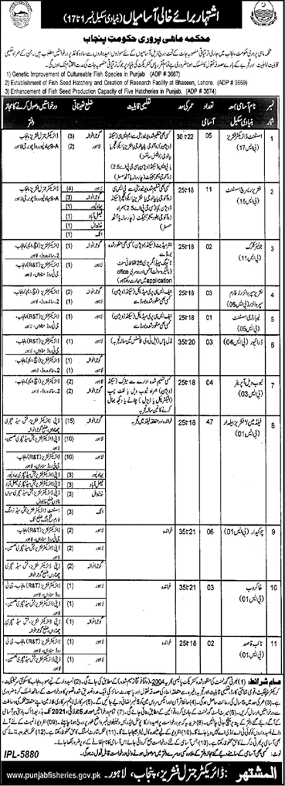 Fisheries Department Punjab Government Jobs June 2021